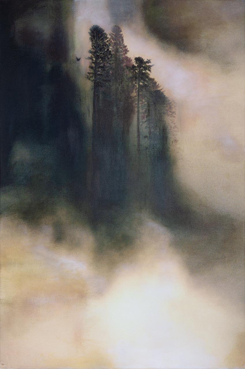 Når skogen våkner